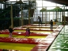 trampoline_7